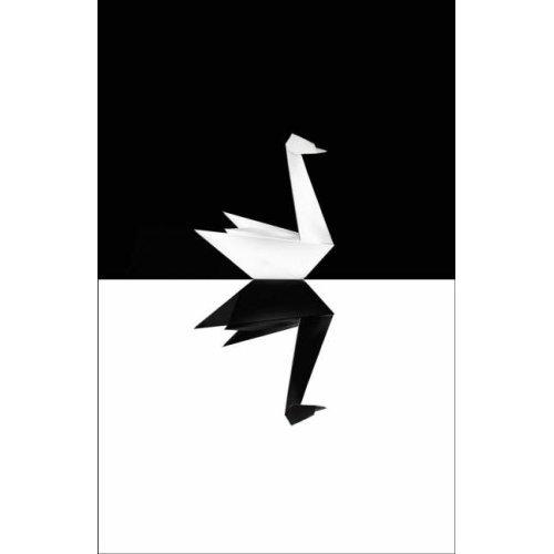 The Black Swan Visits Japan: 9.0 Earthquake, Tsunamis, Nuclear Power Plants (1/2)