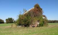 House side