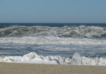 es surf 12