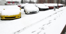 Corvettes in snow