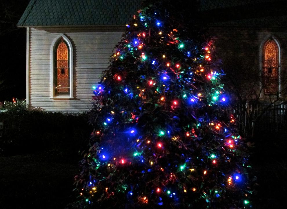 Christmas tree 1