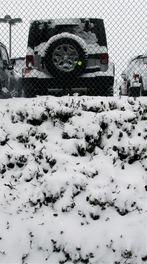 Four-wheel drive in the snow