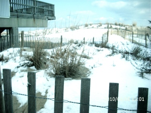 SAND DUNES COVERED WITH SNOW.  John Hayden photo